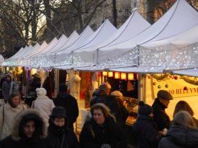 tentes pliantes V2 au marché de Noël de Saint Germain des Pré