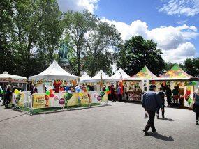 tentes pliantes V3 PRO à la fête des fruits et légumes frais